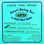 Carter Ernie Ball C6 10 String Nickel – Smart String Set