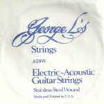 George L's Stainless .020 Wound String