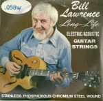 George L's Stainless .058 Wound String